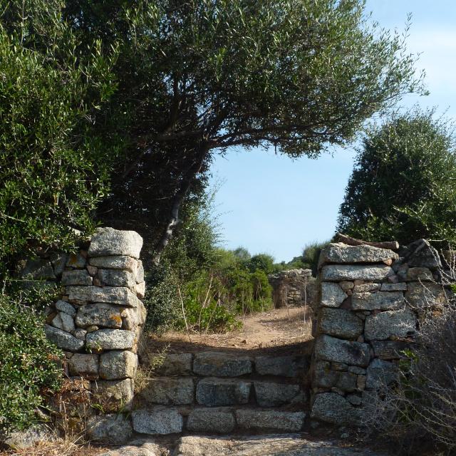 Paysage à découvrir autour de la location de villa en Corse dans le golfe de Liscia, sentier et ballade dans le maquis corse